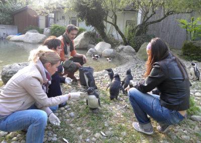 Incentive au zoo de Mulhouse © OTC