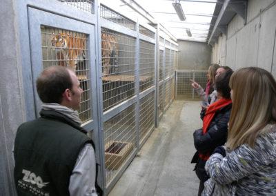 Découverte privilège du Parc zoologique et botanique de Mulhouse © OTC