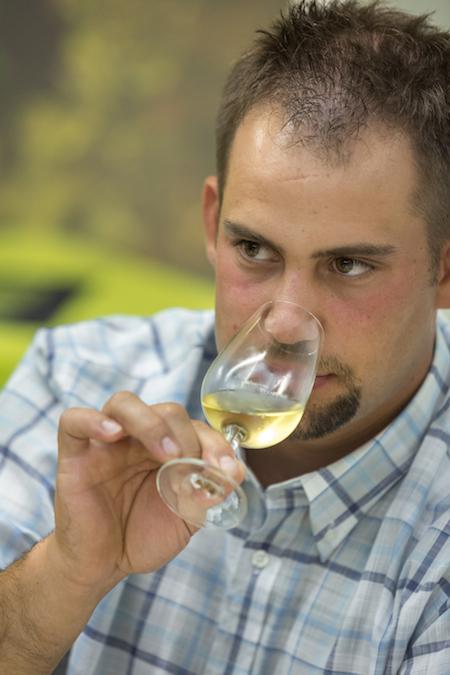degustation vin alsace